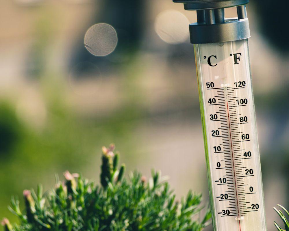 В Крыму ожидается аномально жаркая погода