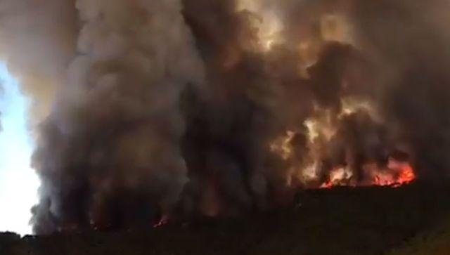 Три новых очага и эвакуация отелей: пожар в Турции распространяется