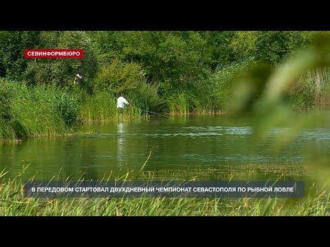 В Передовом стартовал двухдневный чемпионат Севастополя по рыбной ловле