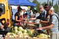 В Крыму проверили цены на продукты на сельхозярмарке