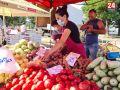 «Цены на 20% ниже, чем на рынке»: в Симферополе проходят сельскохозяйственные ярмарки