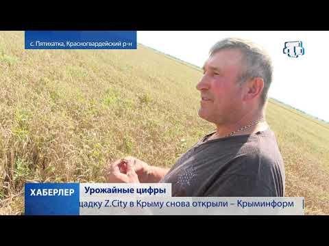 Крымские аграрии намолотили свыше миллиона тонн зерна и зернобобовых