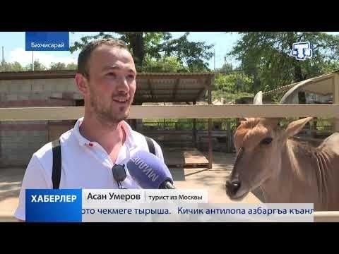 Звериный бэби-бум в Крыму