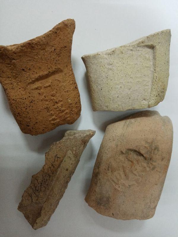 Предметы из раскопок античных поселений Кульчук и Беляус пополнили фондовое собрание Музея-заповедника «Калос Лимен»