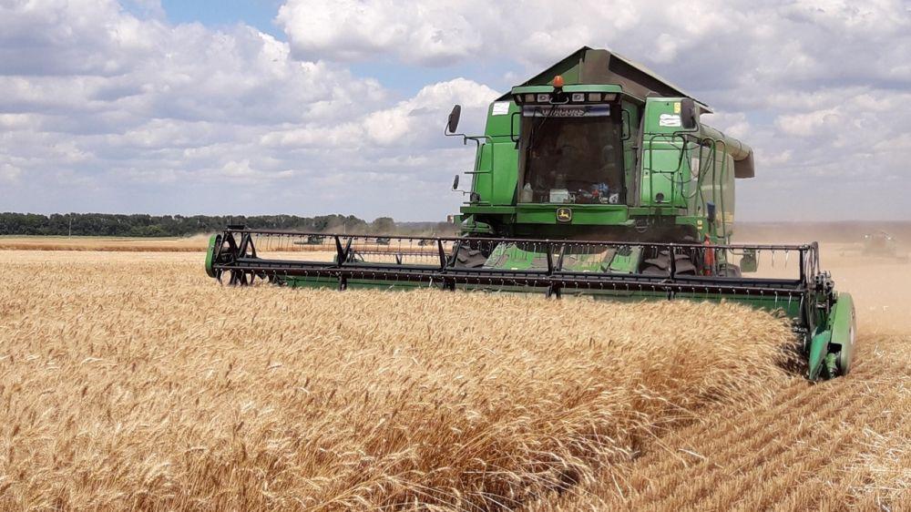 Информацию о ходе уборки зерновых культур в Белогорском районе