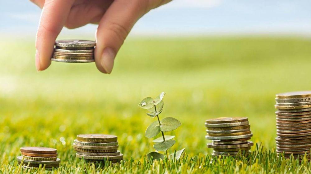 53 проекта инициативного бюджетирования получат софинансирование из бюджета республики – Ирина Кивико