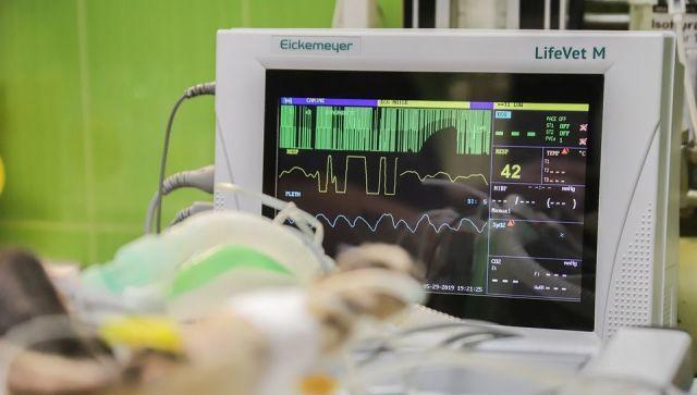 Как пережить жару людям с заболеваниями сердца - кардиолог