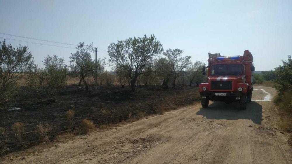 В МЧС обращают внимание: в связи с чрезвычайной пожарной опасностью увеличиваются риски распространения огня на большие территории.
