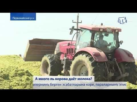 В Крыму заготавливают на зиму корм для сельхозживотных