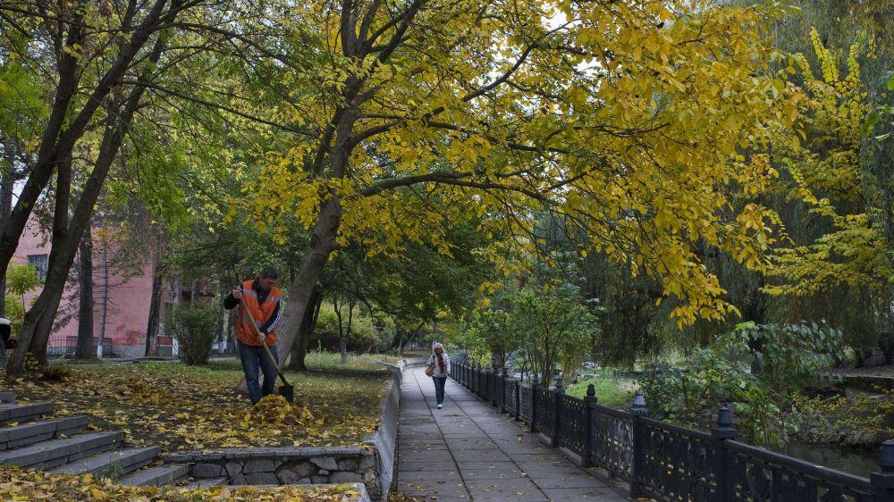 Готовы к листопаду: в Симферополе начали пылесосить дороги и улицы