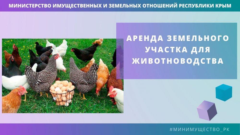 Минимущество Крыма предоставит в аренду два земельных участка в Раздольненском районе