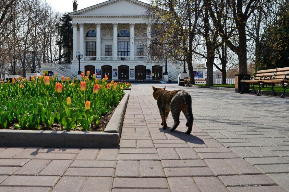В Севастополе начали отмечать 110-летие драмтеатра им. А.В. Луначарского