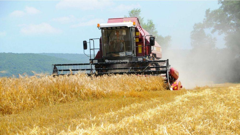 Аграрии получат 10 млрд рублей на развитие экспорта - власти