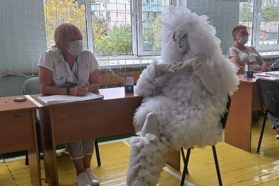 Чудо в перьях и марсианка проголосовали на выборах в Крыму