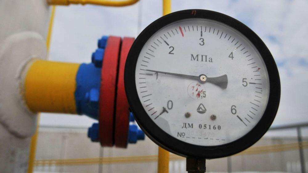 Киеву придется просить энергоносители у РФ и Белоруссии – депутат Рады