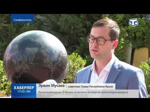 Высокий результат: в Крыму обработали почти 100% протоколов