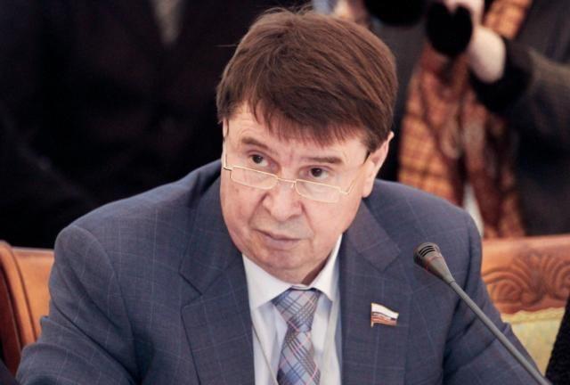 Сенатор прокомментировал непризнание Турцией и Грузией выборов в Крыму