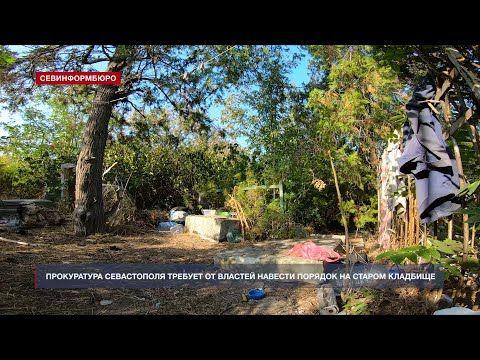 Бомжам не место в склепе: прокуроры требуют навести порядок на старом кладбище