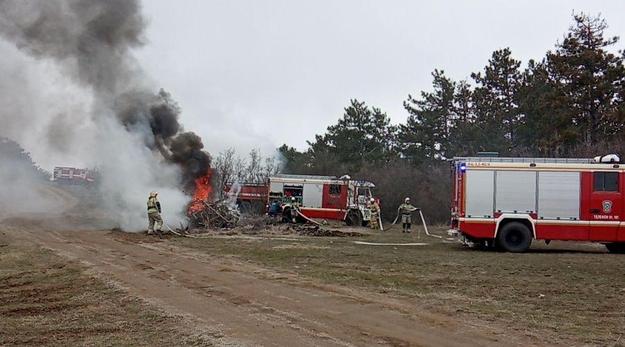 Число лесных пожаров в этом году в Крыму сократилось почти на 84%