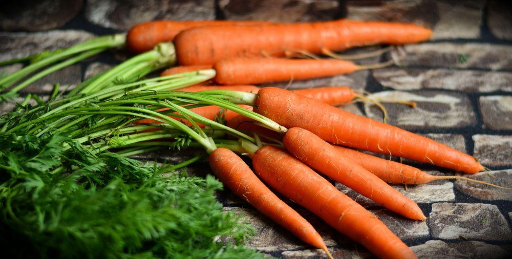 В Крыму на сельскохозяйственных ярмарках цены на 20% ниже рыночных