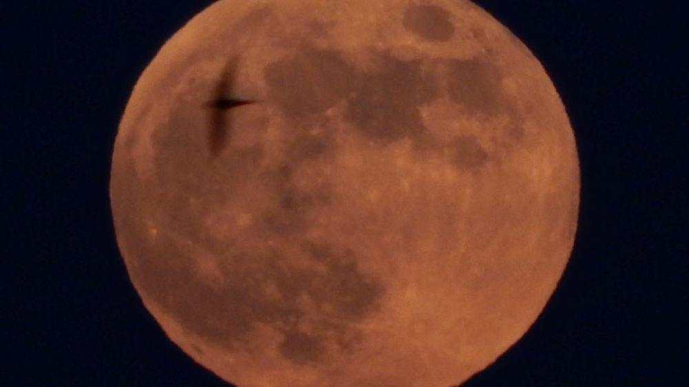 В России обдумывают проект туристического облета Луны
