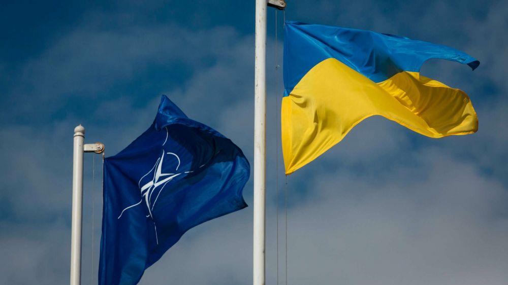 В Кремле озвучили мнение Путина о теме НАТО на Украине