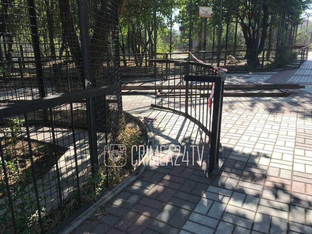 В «Тайгане» возле вольеров ягуара и Бенгальского тигра устанавливают новые ограждения
