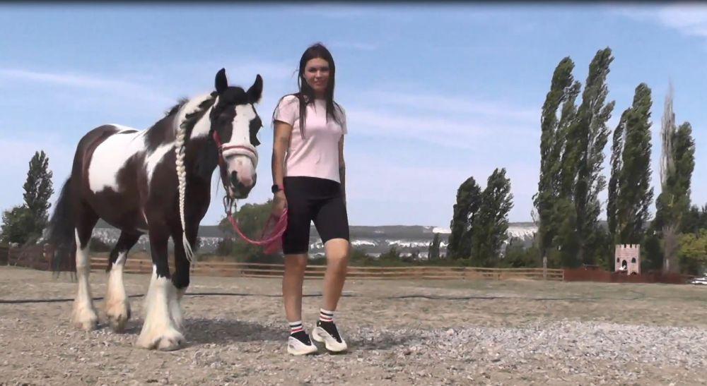 Верблюд из Челябинска и лошадь из Подмосковья: жительница Севастополя спасает от смерти животных со всей страны