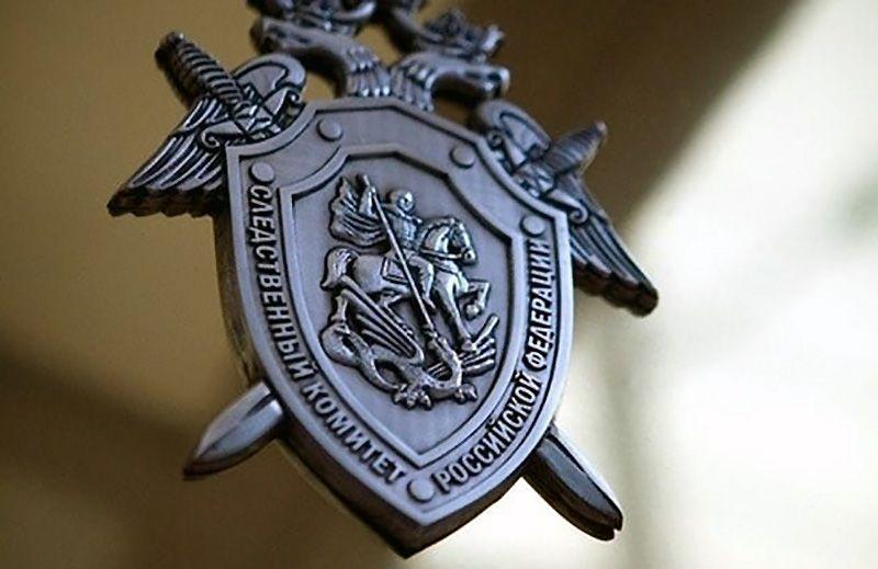 Бастрыкин взял на контроль уголовное дело по парку «Тайган»