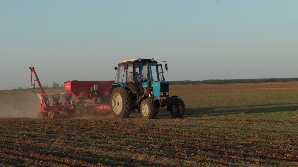 Андрей Рюмшин: В Крыму под урожай 2022 года планируется посеять более 540 тысяч гектаров озимых культур