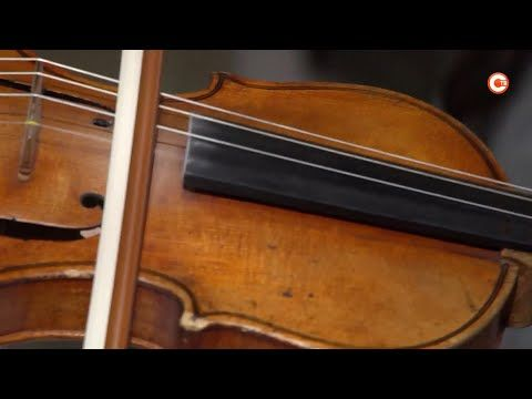 Две скрипки и фортепиано. Дети-музыканты — получатели правительственных стипендий (СЮЖЕТ)