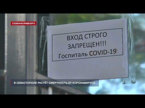 В Севастополе за сутки коронавирусом заболели 299 человек