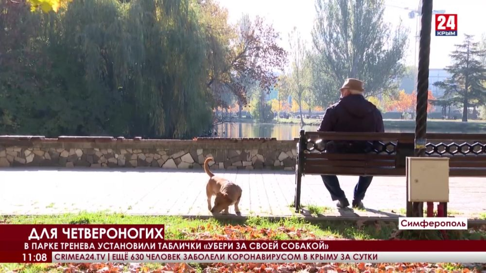 В столице и регионах Крыма оборудуют парки для прогулок с собаками