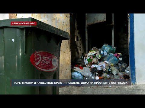 Горы мусора и нашествие крыс – проблемы дома на проспекте Острякова