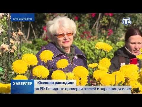 В Никитском ботаническом саду стартовал традиционный Бал хризантем
