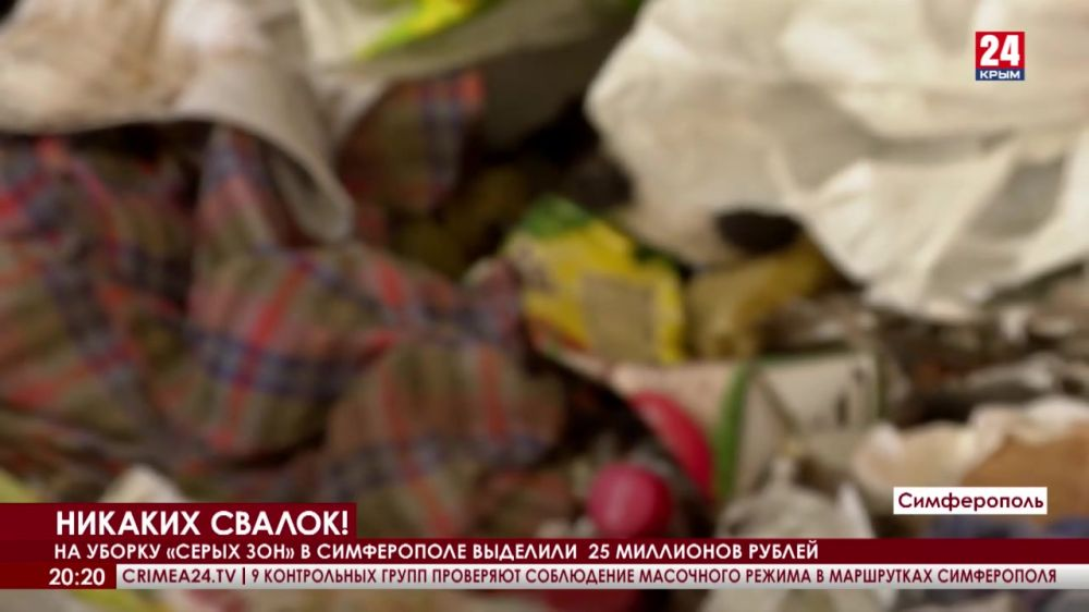 Как в крымской столице решают мусорную проблему?