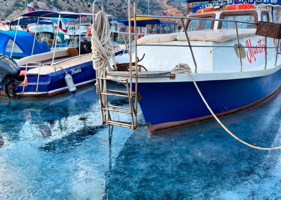 Балаклавскую бухту атаковали медузы