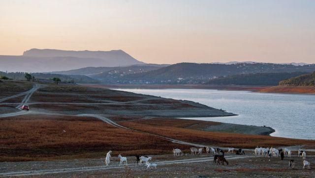 Пастухи выгоняют свои стада пастись на берега водохранилища на рассвете.