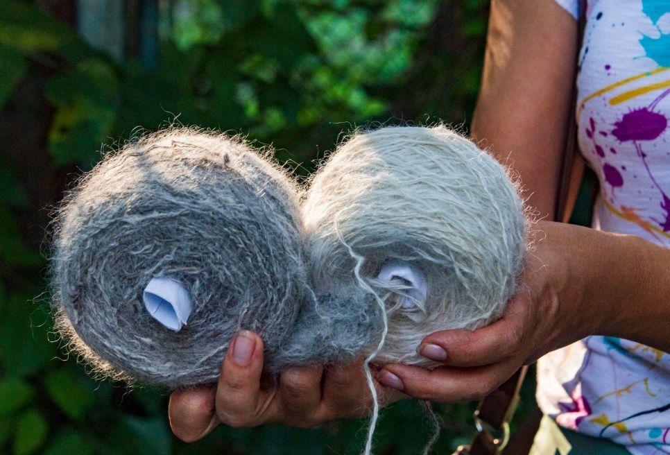 Собака татарских пастухов: с челкой и крымским характером